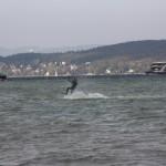 Kiter-WSCK-2010-03